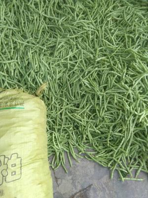这是一张关于白花四季豆 12cm以上 新四季豆~货亮!的产品图片