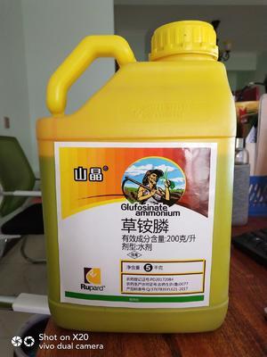 这是一张关于草铵膦 水剂 瓶装 低毒 的产品图片