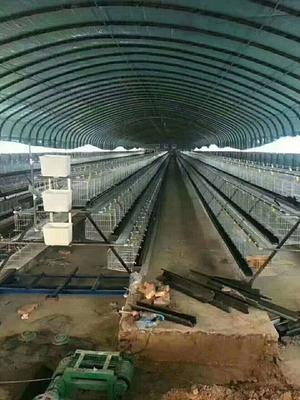 这是一张关于养殖大棚 的产品图片