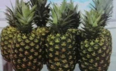 海南省海口市美兰区都乐金菠萝 3 - 4斤