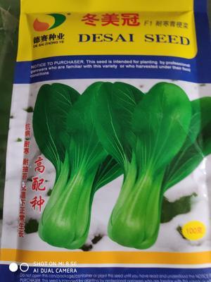 这是一张关于冬美冠青梗菜种子 杂交种 ≥90% 的产品图片