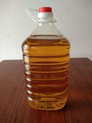 广东省梅州市兴宁市野生山茶油