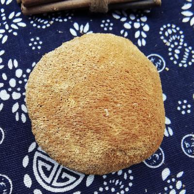 福建省宁德市古田县古田猴头菇 3cm~6cm 干猴头菇