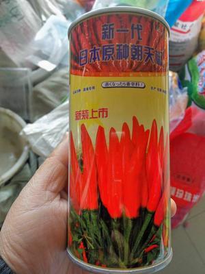 这是一张关于日本原种朝天椒 常规种(大田用种) ≥85% 的产品图片