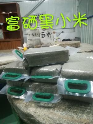 这是一张关于黑小麦面粉 的产品图片