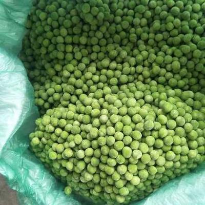 这是一张关于速冻豌豆 的产品图片