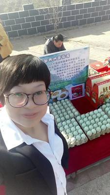 辽宁省营口市大石桥市麻鸭蛋 食用 箱装