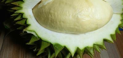 广西壮族自治区崇左市凭祥市干荛榴莲 2公斤以下 90%以上