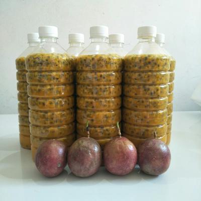 广西壮族自治区玉林市北流市百香果原浆 6-12个月