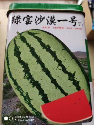 这是一张关于绿宝沙漠一号西瓜 二倍体杂交种 ≥90% 的产品图片
