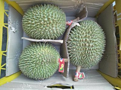 广西壮族自治区崇左市凭祥市猫山王榴莲 2公斤以下 90%以上