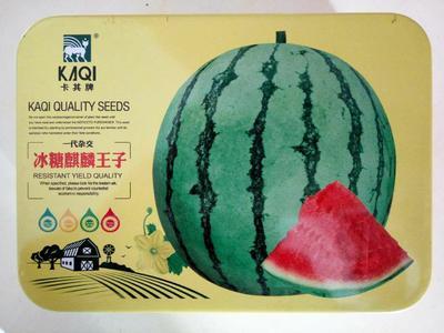 这是一张关于甜王冰糖王子西瓜 二倍体杂交种 ≥90% 的产品图片