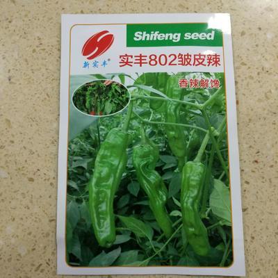 这是一张关于薄皮辣椒种子 杂交种 ≥90% 的产品图片
