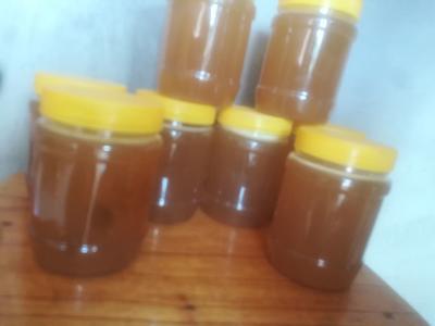 广西壮族自治区崇左市宁明县土蜂蜜 散装 95%以上 2年以上