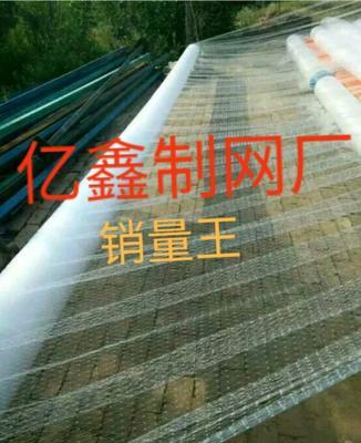 河南省新乡市卫滨区防鸟网 亿鑫制网厂