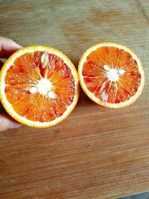 这是一张关于玫瑰血橙 60 - 65mm 3两 的产品图片