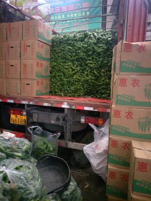 福建省泉州市惠安县薄皮椒 混装通货 中辣 黄色