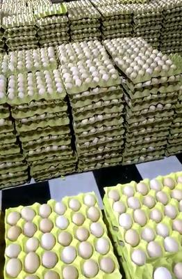 江西省赣州市宁都县普通鸡蛋 食用 箱装