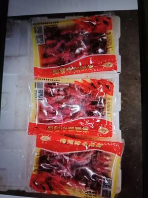 湖北省湖北省潜江市潜江小龙虾 4-6钱 稻田虾