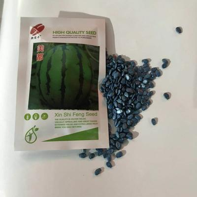 山东省临沂市兰山区早佳8424西瓜种子 亲本(原种) ≥85%