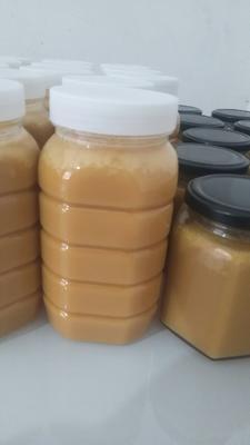 陕西省汉中市南郑县土蜂蜜 玻璃瓶装 2年以上 100%
