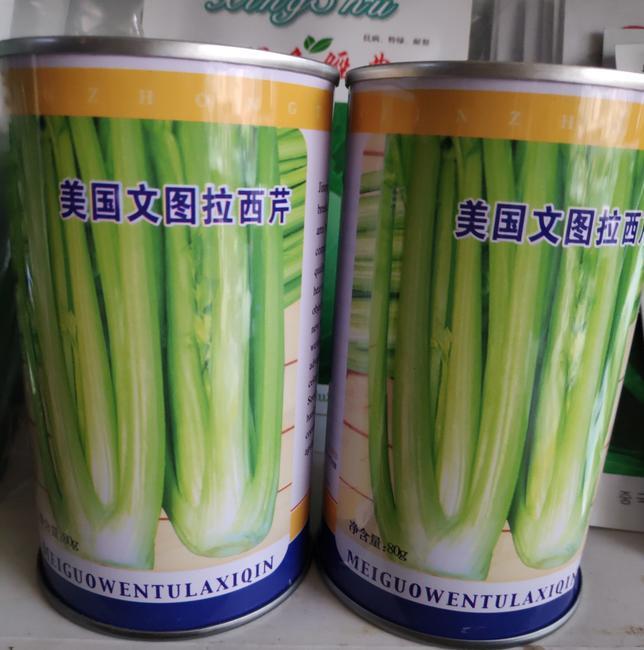 黄心芹菜种子 大田用种 ≥85% 盒装