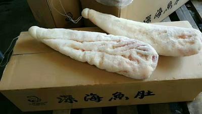 山东省济南市历城区鱼肚