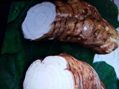 这是一张关于野生葛根 2.0-2.5斤 的产品图片