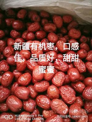 新疆维吾尔自治区阿克苏地区阿克苏市新疆红枣 统货