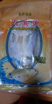 这是一张关于黄鱼干 的产品图片