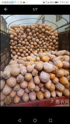 这是一张关于金韩蜜本南瓜 混装通货 的产品图片