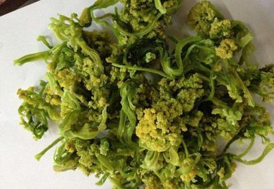 这是一张关于脱水花菜 24个月以上 的产品图片