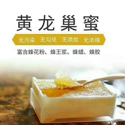 陕西省延安市黄龙县土蜂蜜 玻璃瓶装 1年 95%以上
