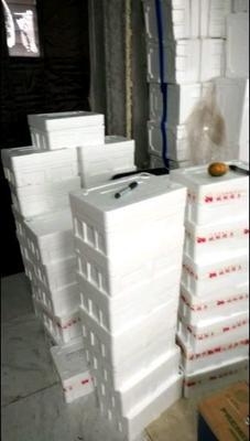 这是一张关于草莓柿子  1 - 2两以上 盘锦碱地柿子的产品图片