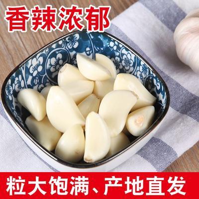 这是一张关于蒜米 混级统货 多瓣蒜 的产品图片