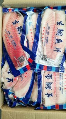 山东省济南市历城区冰冻鱼类