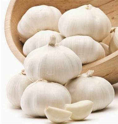 山东省济宁市金乡县白皮大蒜 5~5.5cm 多瓣蒜