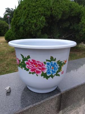 这是一张关于花钵/花箱 的产品图片