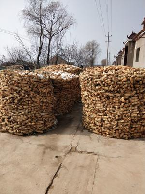 陕西省咸阳市淳化县玉米干粮 净货 水份14%-16%