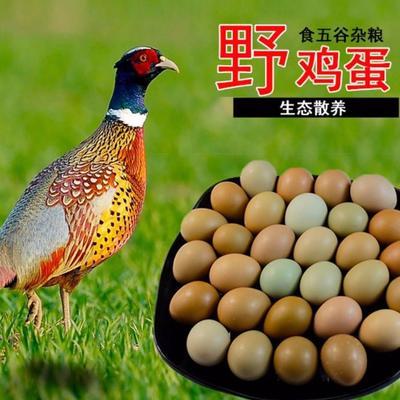 这是一张关于野鸡蛋  食用 散装 成都野鸡蛋四川野鸡蛋的产品图片