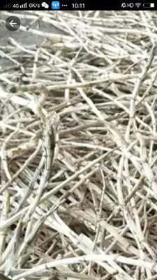 这是一张关于白茅根 的产品图片