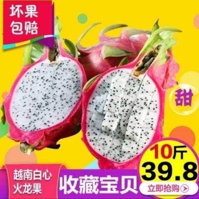 越南红心火龙果  大(7两以上) 白心火龙果