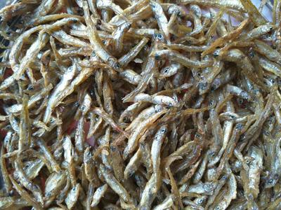 这是一张关于公干鱼  油炸小公鱼的产品图片