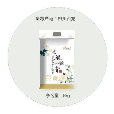 重庆渝中区有机米 一等品 晚稻 籼米