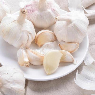 这是一张关于杞县大蒜 混级统货 多瓣蒜 的产品图片
