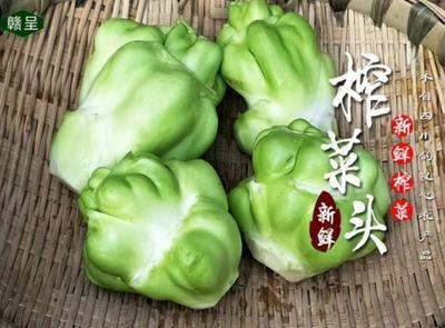 重庆长寿区鲜榨菜