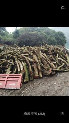 这是一张关于果木木炭 的产品图片