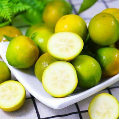 这是一张关于桂林金桔 2-3cm 1-1.5两 的产品图片