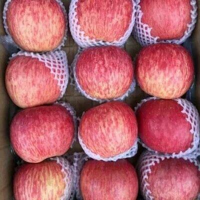 山东省临沂市沂水县红富士苹果 70mm以上 片红 纸袋