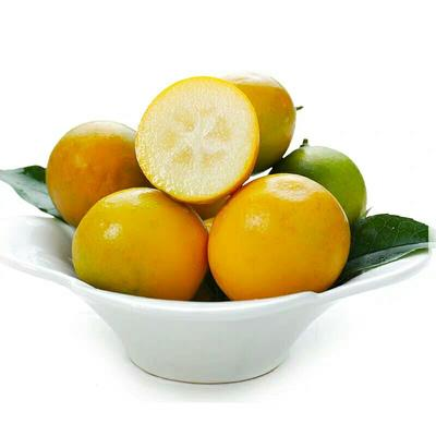 这是一张关于桂林金桔 3-4cm 1两以下 的产品图片
